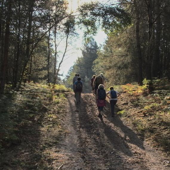 Marcher en Vallée de Chevreuse pour vaincre la mucoviscidose
