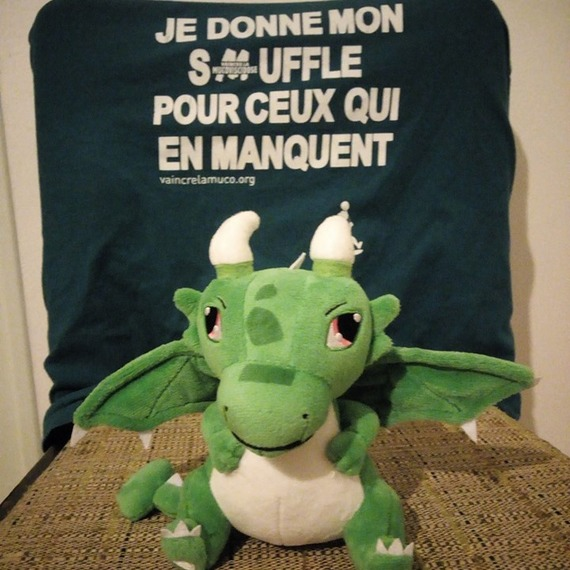 Un don pour Sam le dragon