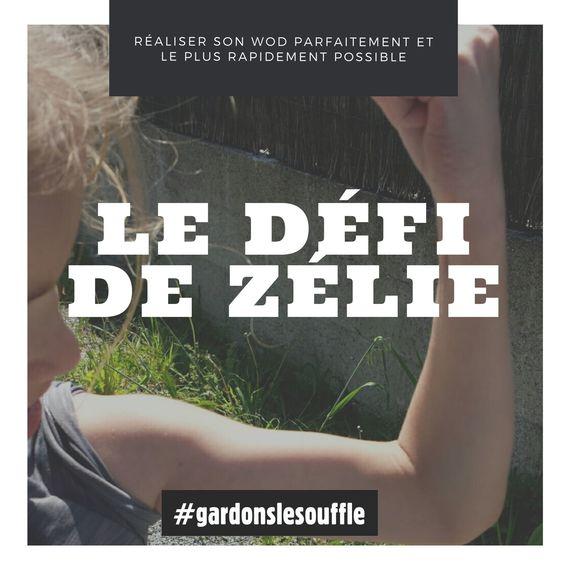 Le défi de Zélie